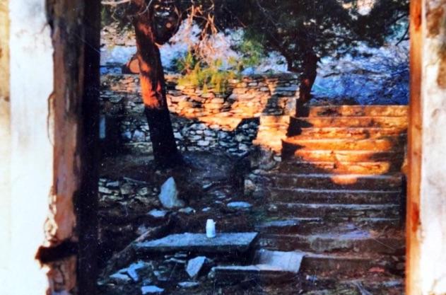 Montofoli Wine Estate the stairway leading to the houses
