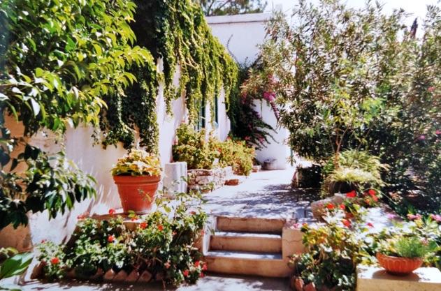 Montofoli Wine Estate the corridor leading to the houses restored