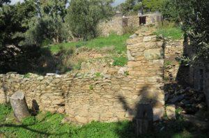 Montofoli Wine Estate Villa Amfithea stables